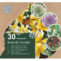 Blanding til sommerfugle, 30 økologiske løg