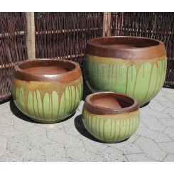 Evy Krukke, Grøn og brun*