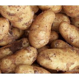 Linzer Læggekartofler