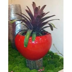 Rød Bowle, indendørs